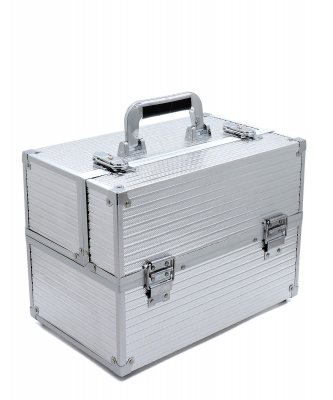 Makeup Train Case Professional Cosmetic Box CO410 SILVER