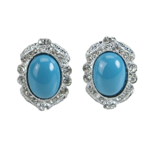 Earrings with Stone 31963 Silver Frame