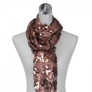 Medium Sized Sequence Accent Scarf - Brown